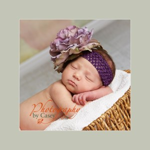 newborn baby photographs