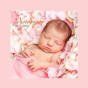 photography of newborn baby sleeping in rose petals