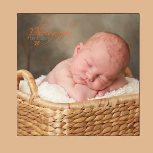 Basket with Sleeping Newborn