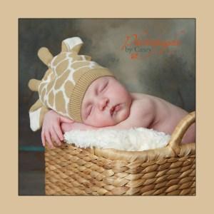 newborn baby wearing giraffe hat