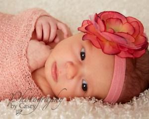 Boston MA Newborn Baby Photography