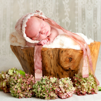 Newborn Photo Sessions