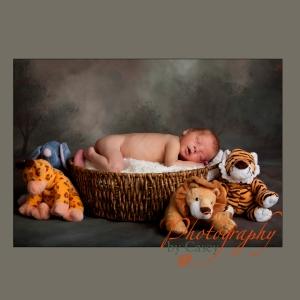 Newborn baby sleeping in basket photographer