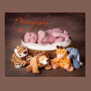 newborn baby in basket surrounded by jungle animals