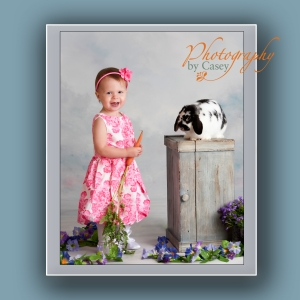 bunnies and children photography