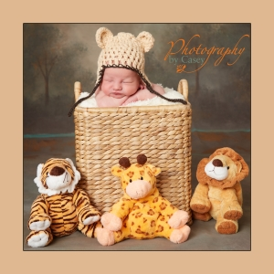 Newborn Sleeping in Basket with Circus Animals