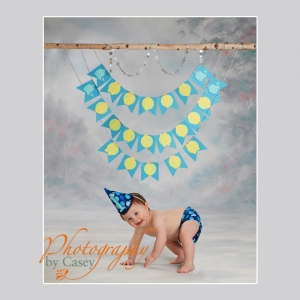 One Year Old Birthday Photography Wrentham MA photographer