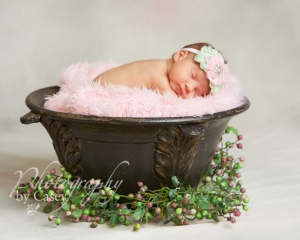 Newborn photography Wrentham MA Photographer