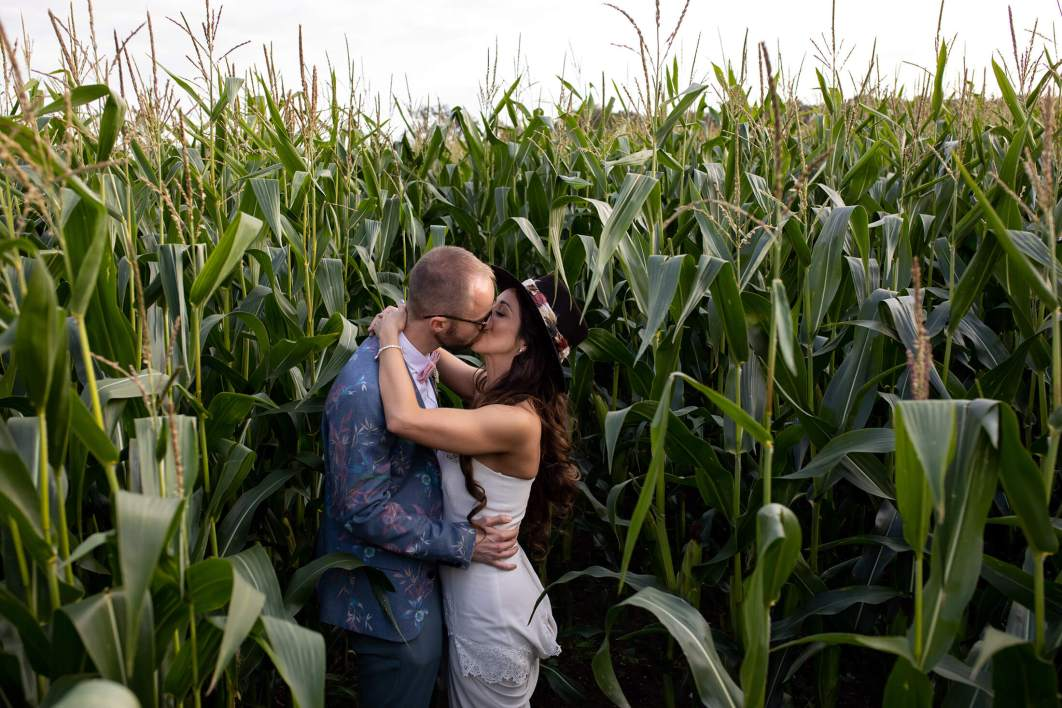 The bride and groom kiss in a cornfield.