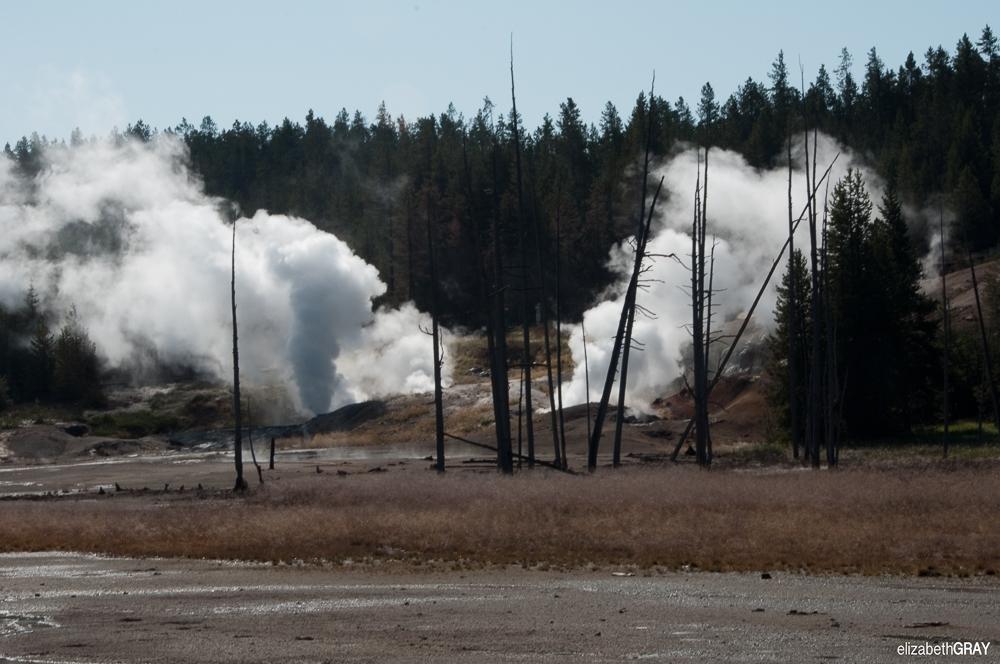 Yellowstone – August 2009