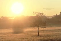 Sonnenaufgang I