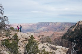 on the edge of the canyon