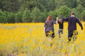8-22-16-ashley-sunflowers-terri-attridge-1041