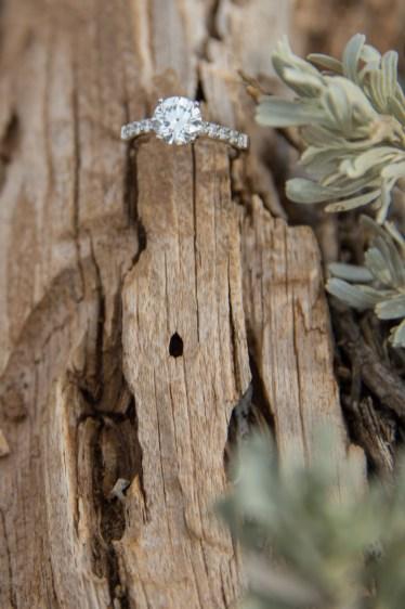 Diamond ring with sage at Grand Canyon
