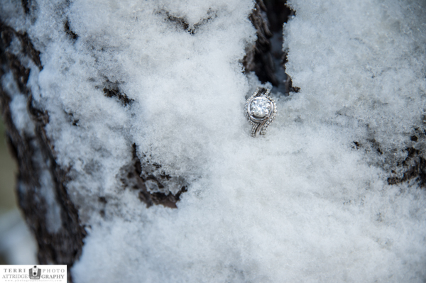 engagement ring in the snow at Grand Canyon