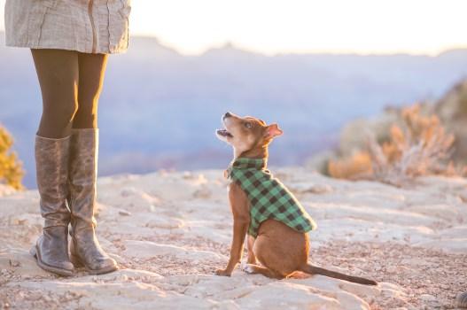 11.23.17 Jenna and Bobby Grand Canyon Engagement Photos Hopi Point Photography by Terri Attridge-46