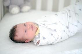 11.4.17 Baby Alana Rose Dryer Gerand Canyon newborn photoshoot photography by Terri Attridge-153