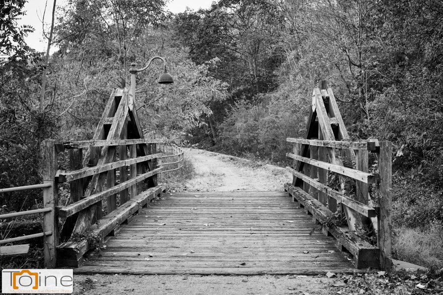 One of the bridges on one of the trails nearby. While the colors of the trees were nice, I really enjoyed this one in Black and White.