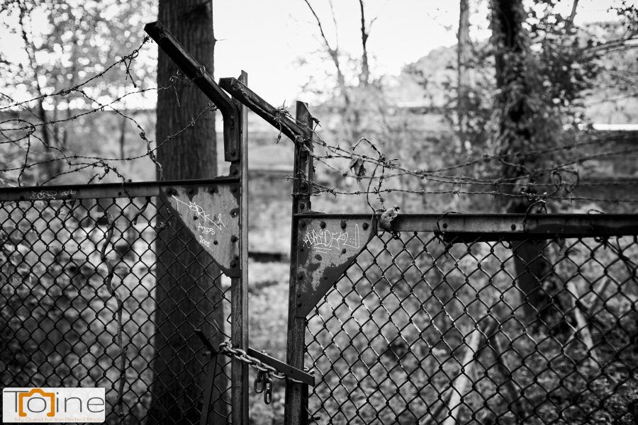 One of the trails goes by an industrial area. it's fenced off, and this gate caught my eye.