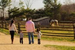 Entering the Farm
