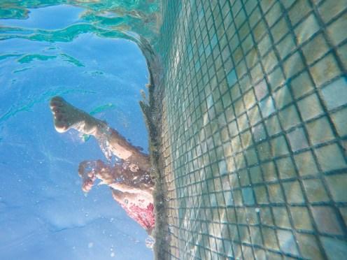 underwater_blog-1-8