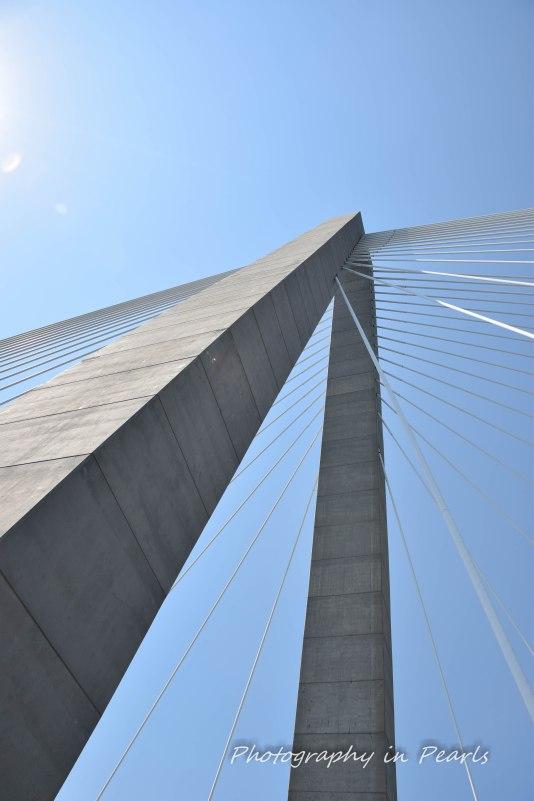 Bridges-Arthur Ravenell-10