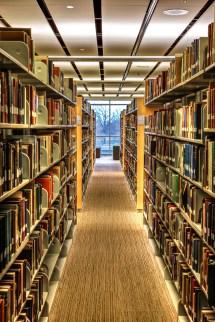 Library Stacks Edward Byrne Journal 2013