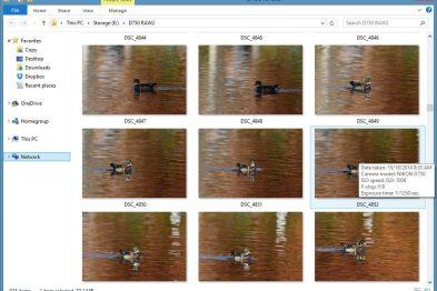 Dng converter naming compression and image setting problems after gallbladder