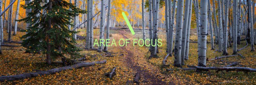 Pano-Background-Focus