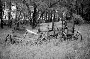 """Wagons Rest"""