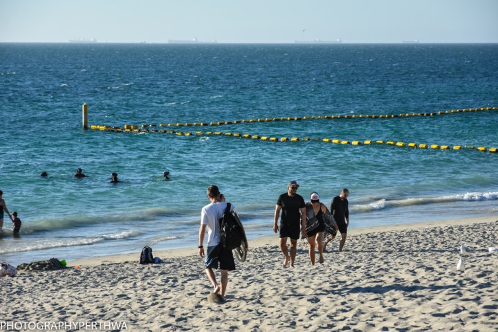 sharkproof-fence-at-coogee-1-of-1