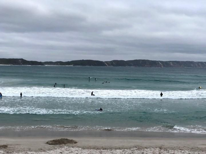 Denmark Ocean Beach surfing2 - 1