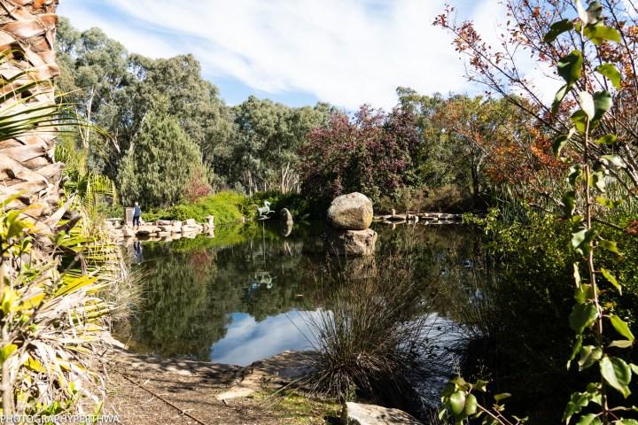 Chinese Memorial Garden5 (1 of 1).jpg