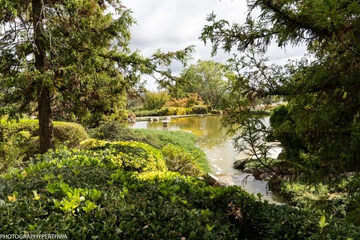 Japanese Garden 9 (1 of 1).jpg