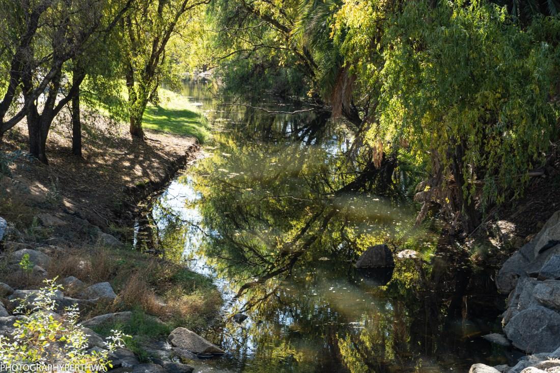 arboretum2 (1 of 1).jpg