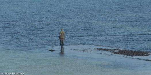 man in the sea (1 of 1)