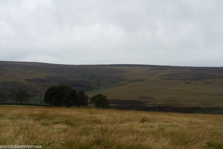 moorland (1 of 1)