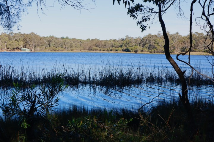 the lake - 1