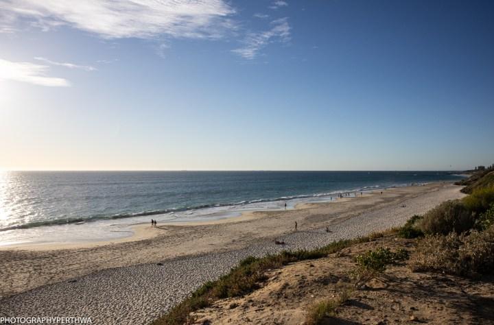 the dog beach (1 of 1).jpg