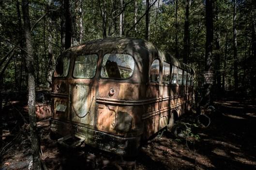 20151017_2477-School-Bus
