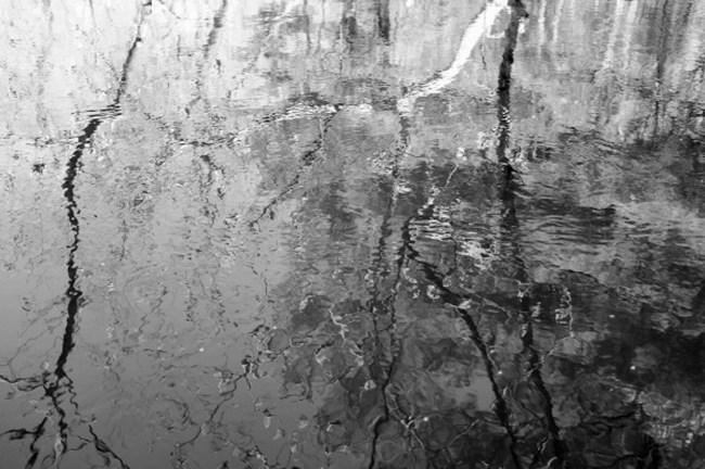 Ipswich-reflection-1