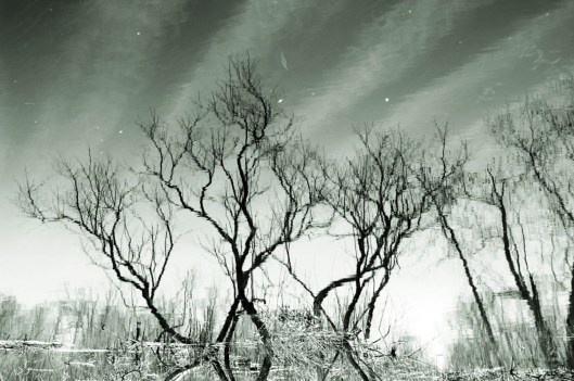 ipswichriver-reflection