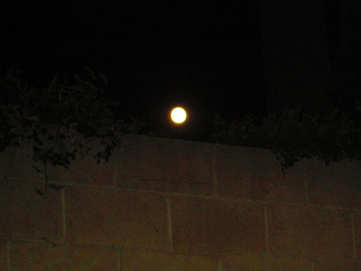 The Moon Over A Brick Wall