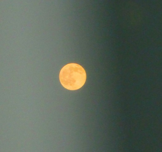 The full moon was orange a couple of weeks ago.