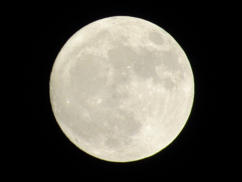 The supermoon is a bright beacon in the night sky.
