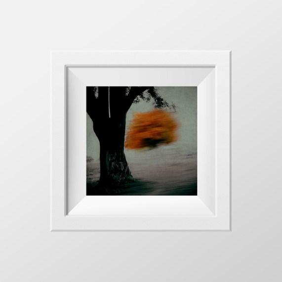 авторское фото на стену дома и в осифе
