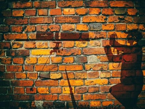 Фотография на стену для оформления интерьеров