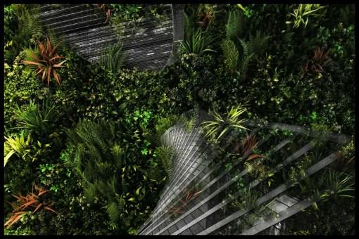 Каменные джунгли. Московский сад цветов
