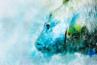 Подводный мир для оформления интерьеров