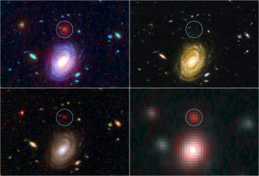 Big Galaxy in Baby Universe